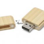 USBlemn1