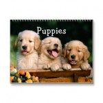 puppies_calendar