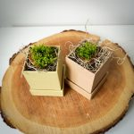 cutie de flori cu capac 01